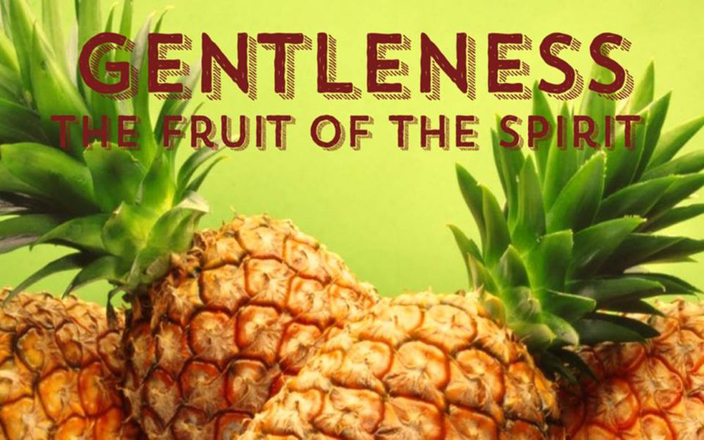 Fruit of the Spirit: Gentleness Image