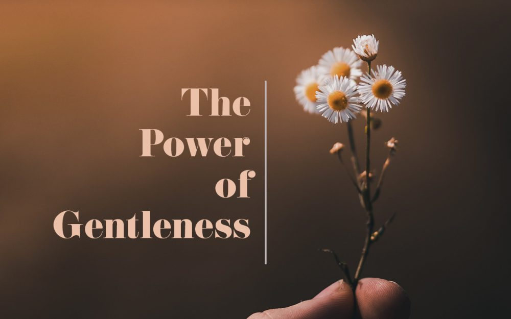 The Power of Gentleness Image