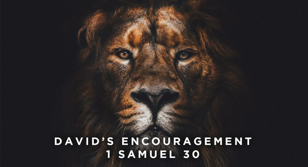 David's Encouragement Image
