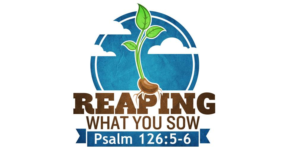 Reaping What You Sow Image