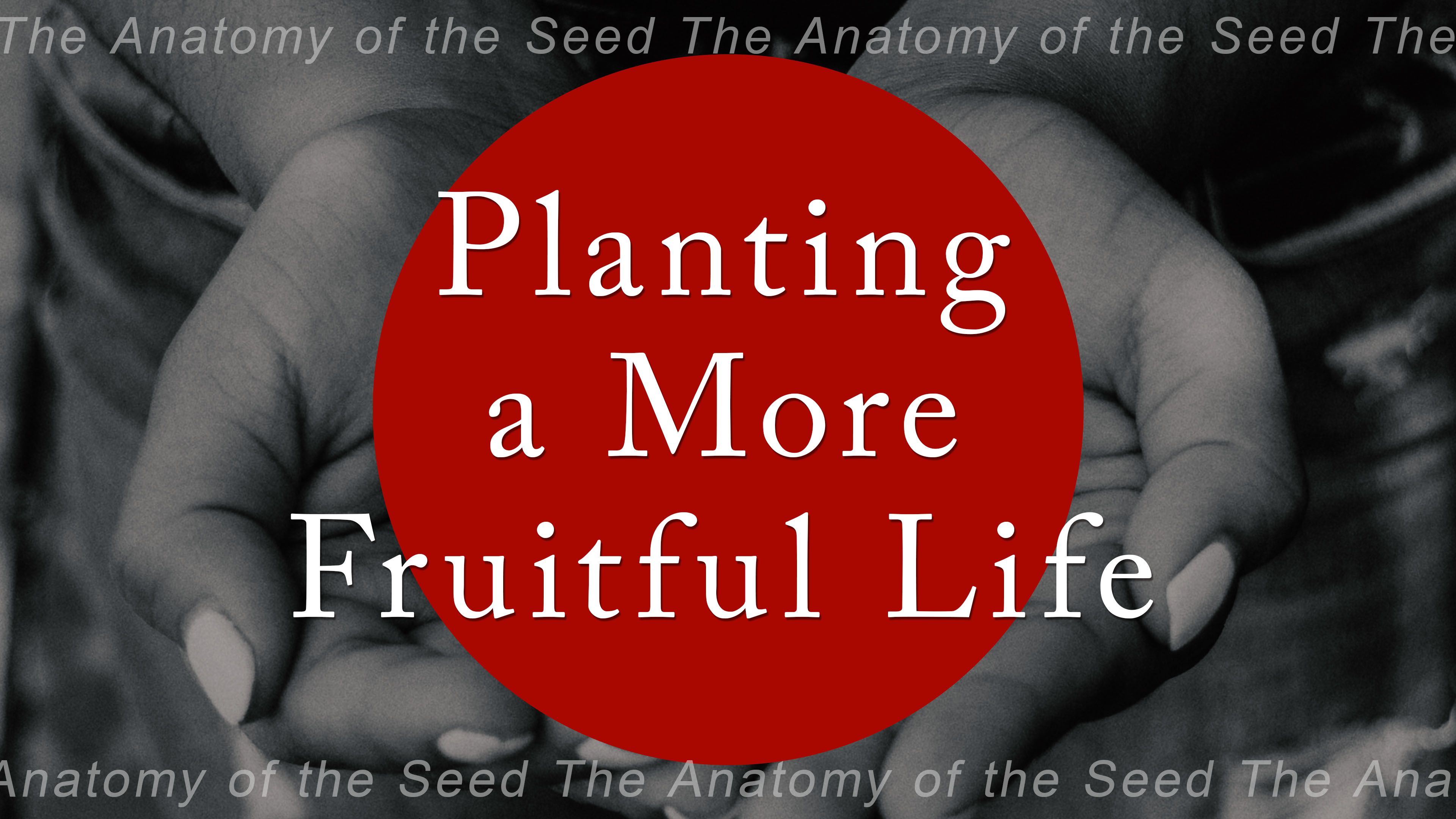 Planting a More Fruitful Life Image